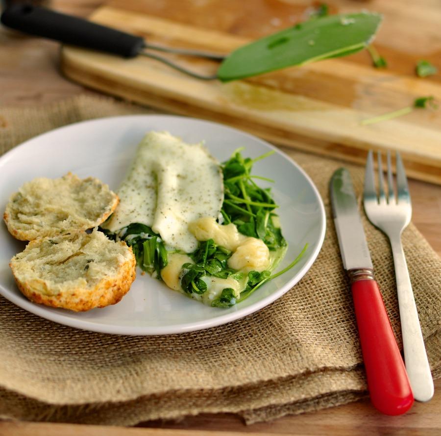 havarti and pea shoot egg white omelette